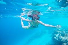 Vida marinha exótica perto da ilha de Maldivas Imagem de Stock