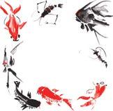 Vida marinha tal como - o camarão, esquatina, carpa de mármore, peixe dourado Foto de Stock Royalty Free