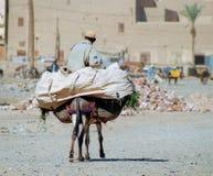 Vida marroquí, #2 Fotos de archivo