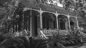 Vida meridional Foto de archivo libre de regalías