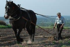 Vida na exploração agrícola 1 Fotos de Stock Royalty Free