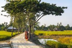 Vida na vila indiana Fotografia de Stock Royalty Free