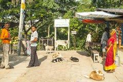 Vida na vila indiana Imagem de Stock Royalty Free