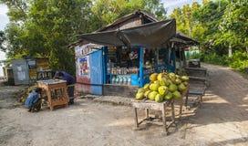 Vida na vila indiana Foto de Stock Royalty Free