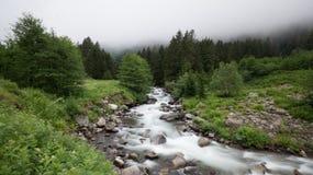 Vida no campo do norte da natureza dos rios de Turquia Rize Fotos de Stock Royalty Free