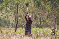 Vida no campo em burundi Fotos de Stock Royalty Free