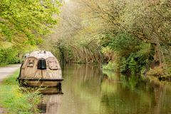 Vida nova para uma canoa de salvação fotografia de stock