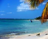 Vida ordinaria medida en la isla de Saona Dominikana, resto entre árboles de coco en una playa arenosa cerca de la turquesa S del imagenes de archivo