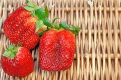 Vida orgánica de tres todavía fresas del verano fresco,  Imagen de archivo