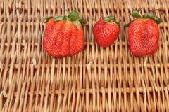Vida orgánica de tres todavía fresas del verano fresco,  Foto de archivo