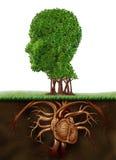 Vida orgânica Fotografia de Stock