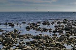 Vida pelo litoral no Mar Negro Nessebar, fotografia de stock