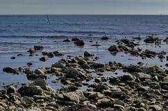 Vida pelo litoral no Mar Negro Nessebar, imagem de stock