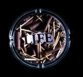 Vida queimada Imagens de Stock