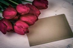 Vida retra del vintage rojo de los tulipanes aún Foto de archivo libre de regalías