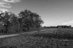 Vida rural fotografía de archivo libre de regalías