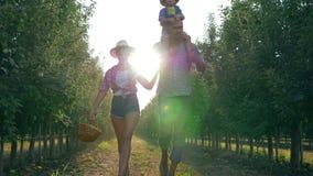 Vida rural, granjeros felices de la pareja con el niño que camina a través de jardín durante la cosecha almacen de metraje de vídeo