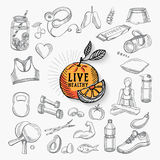 Vida saudável, projeto do ícone Fotografia de Stock