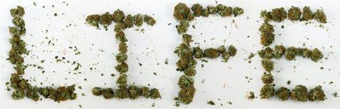 Vida soletrada com marijuana Fotografia de Stock