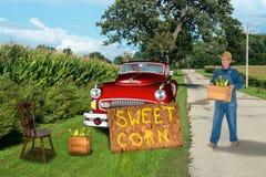 Vida sustentável, fazendeiro nostálgico Selling Sweet Corn Foto de Stock Royalty Free