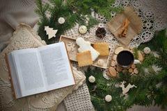 Vida todavía del Año Nuevo con las mandarinas, la taza de té y las galletas Imágenes de archivo libres de regalías