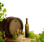 Vida todavía del vino blanco con la vid fresca Fotografía de archivo libre de regalías