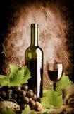 Vida todavía del vino rojo Imagen de archivo libre de regalías
