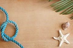 Vida tropical del mar aún en un fondo de madera con una estrella de mar, una hoja de una palmera y una cuerda azul atada a un nud Imágenes de archivo libres de regalías