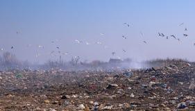 Vidage mémoire d'ordures Images libres de droits