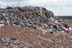 Vidage mémoire d'ordures Photographie stock libre de droits