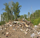 Vidage mémoire d'ordures dans la forêt Images libres de droits