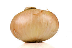 Vidalia sweet onion isolated Royalty Free Stock Photos