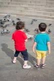 Vidas sós do pássaro em urbano imagem de stock royalty free
