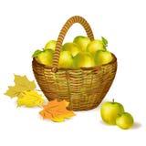Vide- korg med äpplen och höstsidor Arkivbild