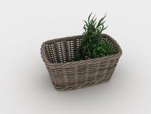 Vide- korg med gräsplaner på en vit bakgrund Arkivfoto
