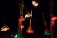 Vide- lampor exponerar en tropisk stång på natten royaltyfria foton