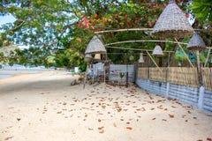Vide- lampor som hänger från träd på stranden, Filippinerna Garnering av utomhus- lyktor på tropisk semester för seacoast royaltyfria foton