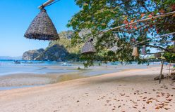 Vide- lampor som h?nger fr?n tr?d p? stranden, Filippinerna Garnering av utomhus- lyktor p? tropisk semester f?r seacoast royaltyfria foton