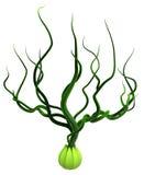 Videira Bud Grow Out da planta ilustração stock