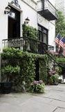 A videira cobriu a entrada da mansão Foto de Stock Royalty Free
