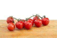 Videira do tomate Fotos de Stock Royalty Free