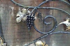 Videira, ramo, feito, ferro Fotos de Stock Royalty Free