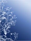 Videira vertical Fotografia de Stock Royalty Free