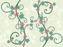Videiras decorativas Imagem de Stock Royalty Free
