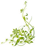 Videiras e flor verdes Fotografia de Stock