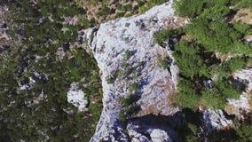 Video aereo della vista superiore delle montagne colpo Roccia, pini, vista superiore stock footage