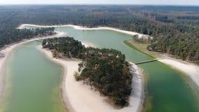 Video aereo rivelante di piccola isola tropicale in lago video d archivio
