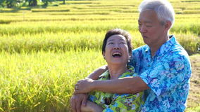Video Asian senior couple hugging in front of rice field. Travel in morning sun stock video footage