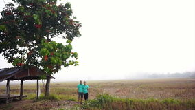 Video Asian senior couple standing next to gazebo in the middle of mist foggy rice field. Farm and agricultural business. Asian senior couple standing next to stock footage