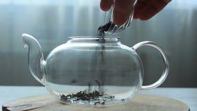 Video av processen av att hälla grönt kinesiskt te i en glass tekanna lager videofilmer
